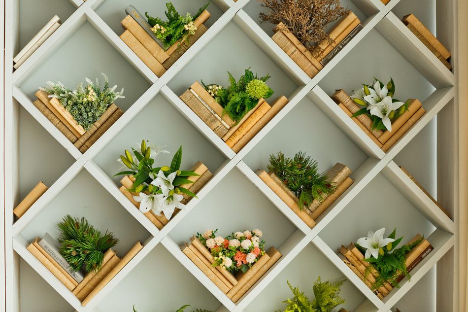 decorating with plants on bookshelves