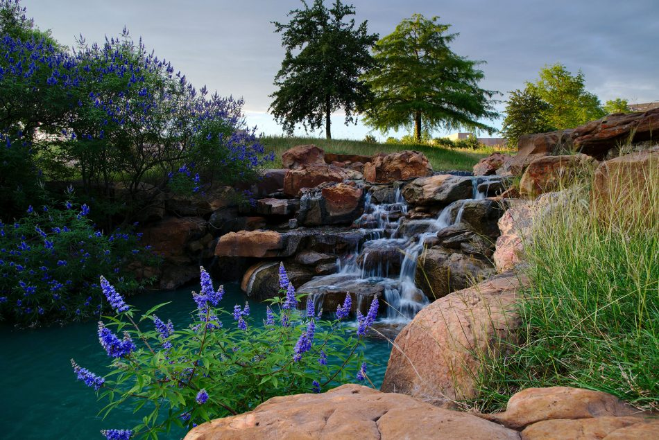 parks to know while living in frisco tx
